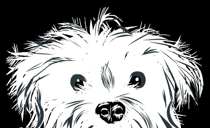 alley dog designs-graphic design bend-homepage