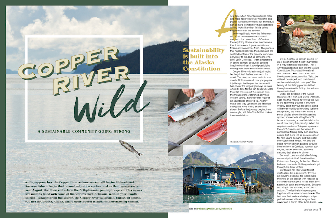 paleo magazine design-copper river wild